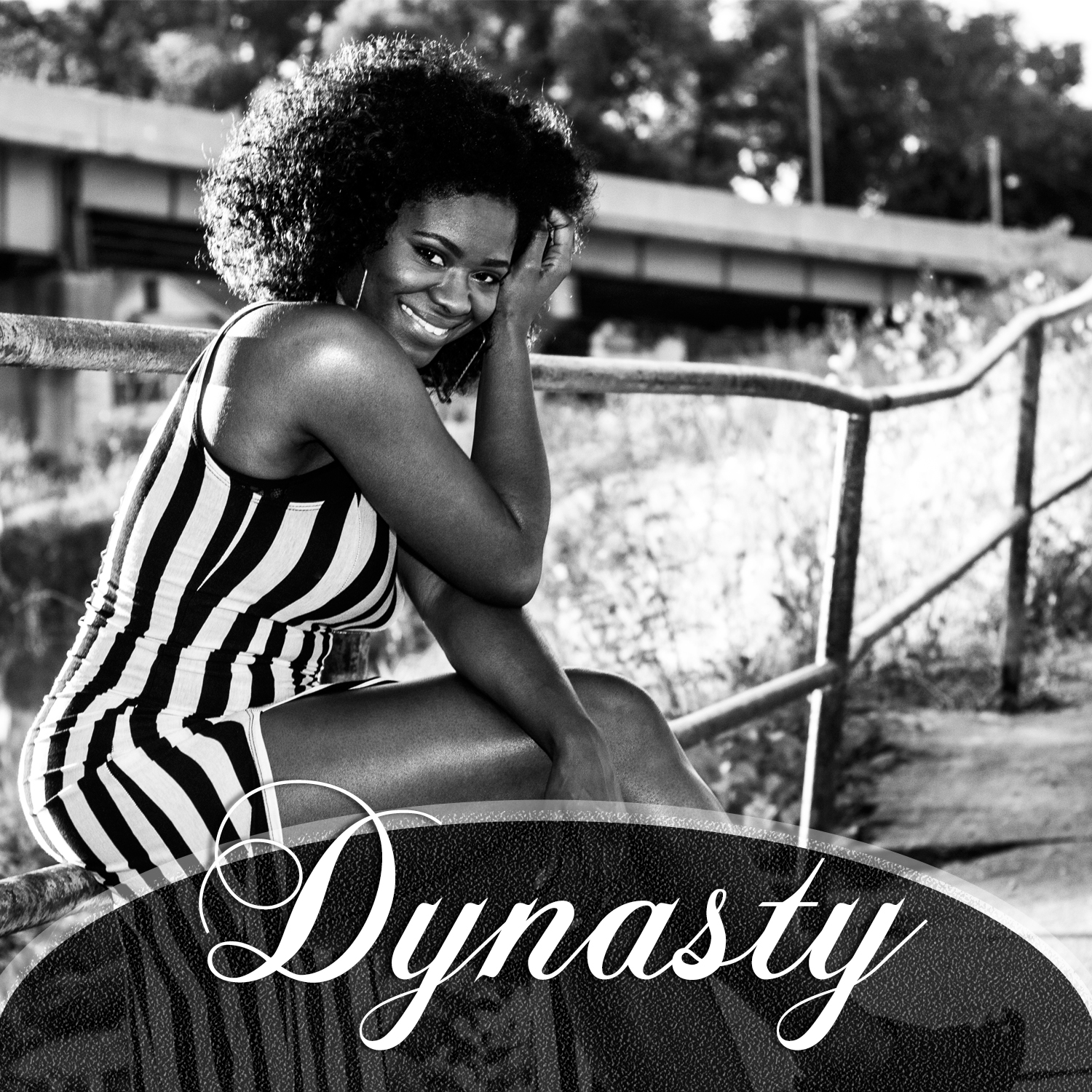 Dynasty front cover album art